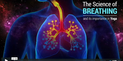 Watch The Science of Breathing